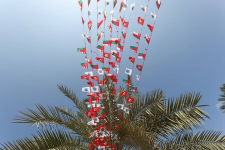 muttrah: Palm tree decorated with national flags of Oman, Middle East Stock Photo