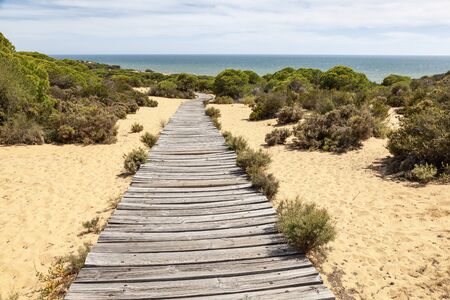 Wooden walkway in the Asperillo dunes, Donana Natural Park, Matalascanas, Huelva province, Costa de la Luz, Andalusia, Spain Stock Photo