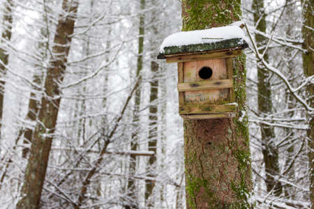 Snow covered wooden birdhouse in a winter forest Banco de Imagens - 91981531