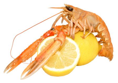 A single langoustine shellfish with lemons, isolated on a white background photo