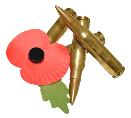 remembrance day poppy: A red remembrance day poppy with green leaf and unfired bullets, isolated on a white background