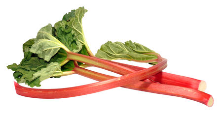 Freshly picked rhubarb stalks and leaves, isolated on a white background