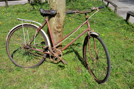 A dirty old rusty peddle bike leaning against a tree in sunshine  Stock Photo