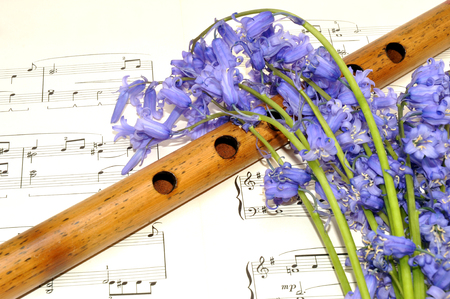 Paper music sheet with a wooden recorder and spring bluebell flowers  Stock Photo