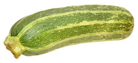 marrow squash: A single fresh ripe marrow squash, isolated on a white background