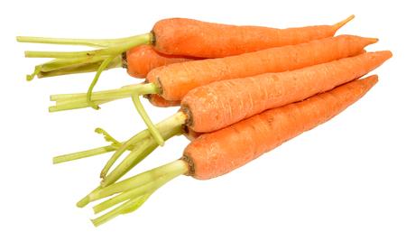 unwashed: Group of fresh raw unwashed carrots isolated on white background