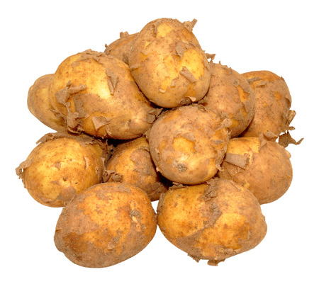 Group of raw dirty new potatoes isolated on a white background. photo