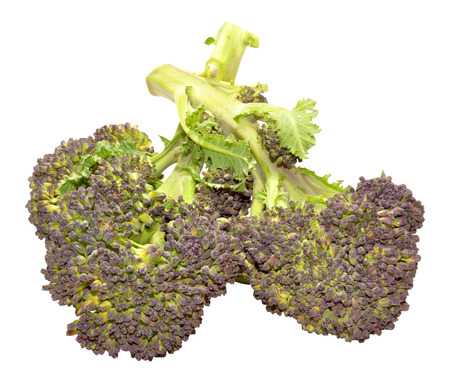 headed: Fresh raw purple headed broccoli isolated on a white background Stock Photo