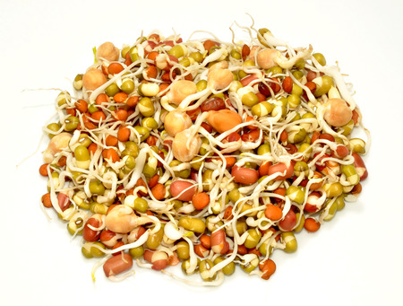sprouting: Healthy sprouting mixed of organic beans and lentils Stock Photo