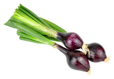 bulb and stem vegetables: Three fresh red spring onions isolated on a white background Stock Photo