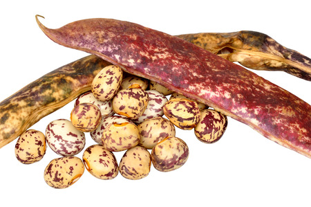 borlotti beans: Borlotti beans and pods isolated on a white background