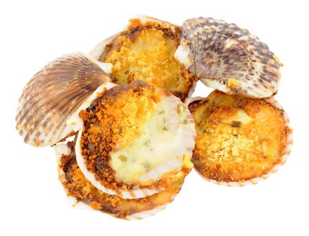 st jacques: Coquilles St Jacques scallops filled with a creamy sauce and crunchy topping isolated on a white background Stock Photo