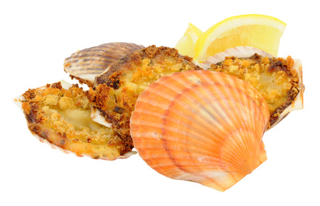 jacques: Coquilles St Jacques scallops filled with a creamy sauce and crunchy topping isolated on a white background Stock Photo