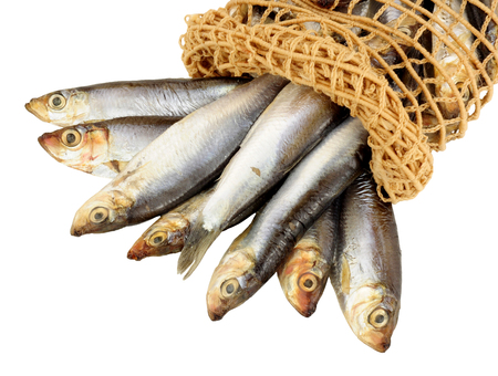sprats: Fresh fish sprats spilling out of net isolated on white background Stock Photo