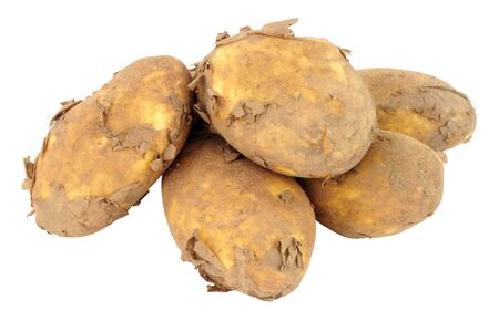 unwashed: Group of dirty unwashed new potatoes isolated on a white background