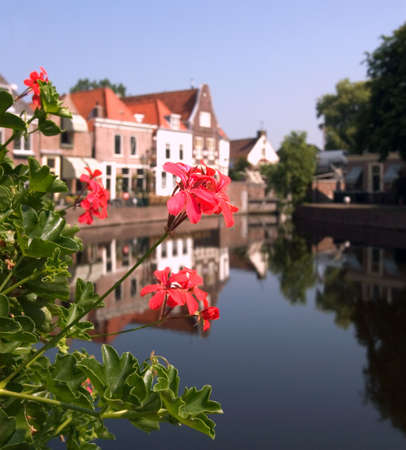 traditionally dutch: A view through the Geraniums in the tiny Dutch harbour village of Spaarndam.