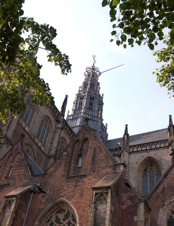 traditionally dutch: St Bavos Church - Through the Trees