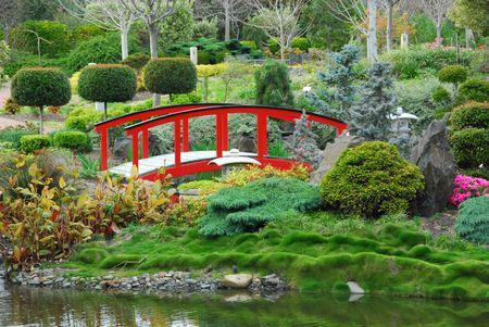 A scene from a Japanese Garden