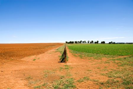 fenceline: A fence, dividing two paddocks - one ploughed, ready for a crop to be sewn, the other with a growing crop