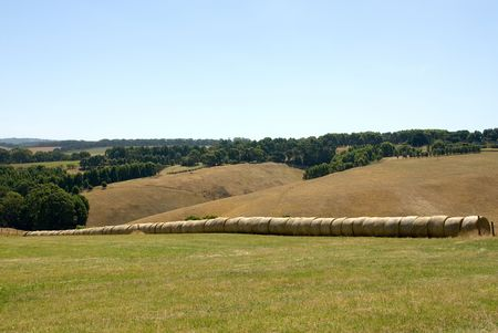 stock vista: Rolls of hay, sitting in a paddock on a farm in Southern Victoria, Australia Stock Photo