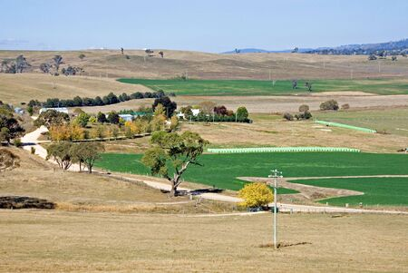 irrigated: Irrigated paddocks, in a drought-stricken region of New South Wales, Australia