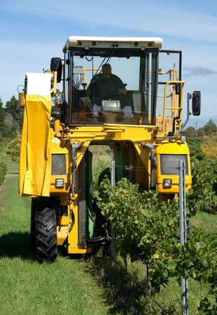 A grape harvester in a vineyard on the Southern Highlands of New South Wales, Australia photo