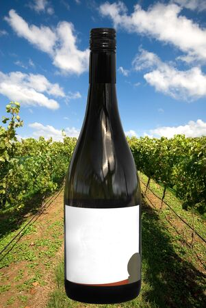 A Wine Bottle with a Vineyard Scene Background photo