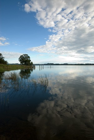 A shoreline scene, in the late afternoon, at Wingecarribee Dam, near Bowral, New South Wales, Australia photo