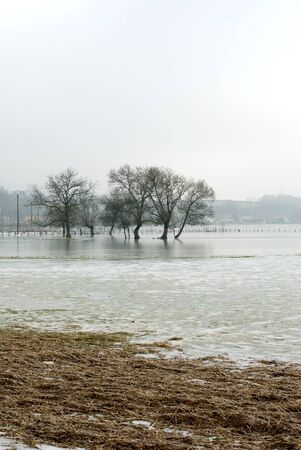 Frozen floodwaters near Macon, France Stock Photo - 8902065