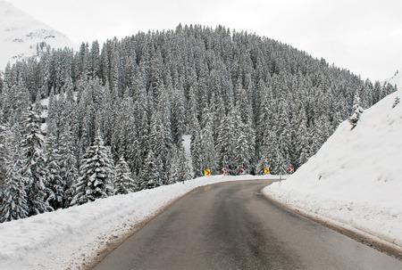 flechas: An alpine road through a forest in Austria