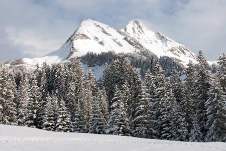 snow covered: Alpine scene, near the village of Warth-Schrcken, in Austria