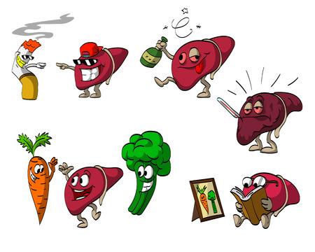 cartoon carrot: Set of cartoon liver illustrations.