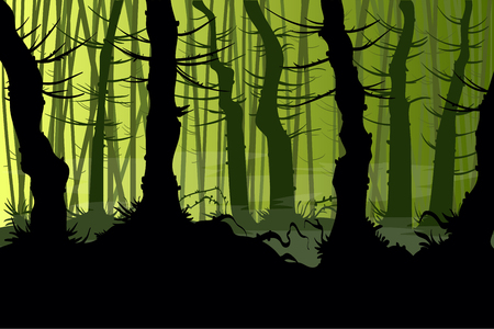 forrest: Vector illustration of a creepy night forest with mist