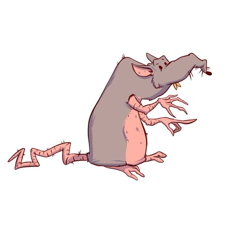 Colorful vector illustration of a big, fat, drity rat