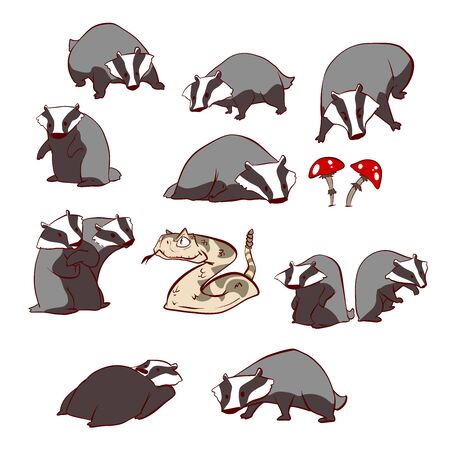 Collection of colorful vector illustraions of badgers, snake and mushrooms
