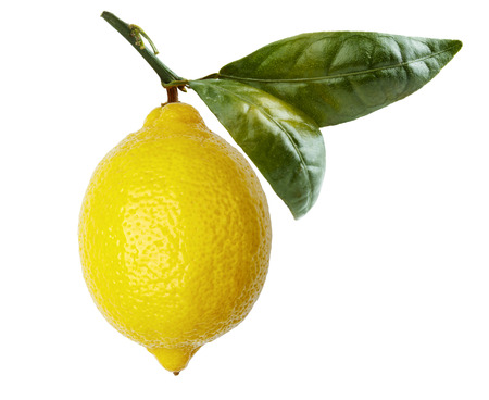 Single yellow lemon, with a stem and leaf attached, shot on a white backdrop. Imagens