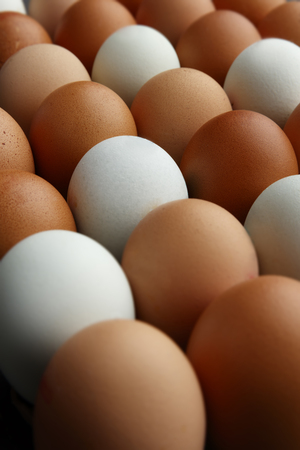 Portrait view of rows of fresh eggs of various colours, shot from a 45 degree angle filling the whole image 版權商用圖片