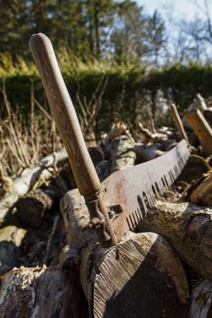 Close up of an old fashioned rusty two man saw sitting on a large pile of logs on a sunny day