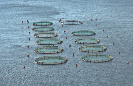 aquaculture: Aquaculture at Greece