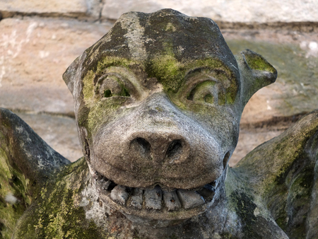 Medieval gargoyle on a stone wall in york