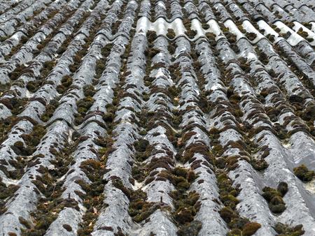 세로 석 모스 ans 복구와 오래 된 석면 지붕 타일