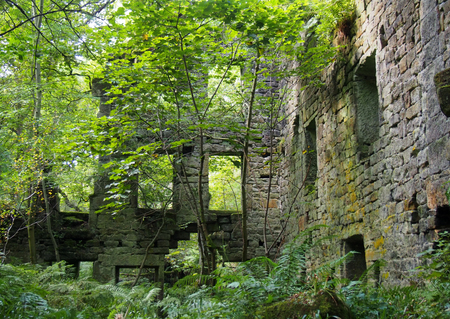 the ruins of staups mill overgrown with trees and ferns in summer near hebden bridge west yorkshire Stock Photo