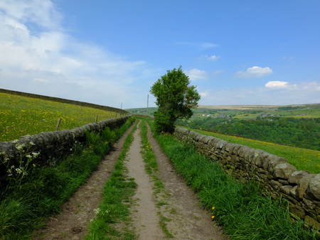 Long straight country lane going uphill in in spring countryside with dry stone walls bordering pastureland and a single tree in a bright sunlit day in the Calder valley west Yorkshire