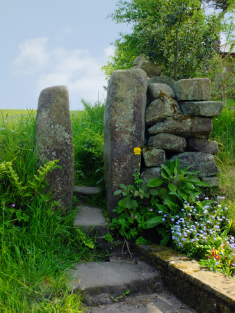 traditional stone gate or stile in a dry stone wall with flowers and ferns in front of a spring green meadow in west yorkshire dales countryside Stock Photo