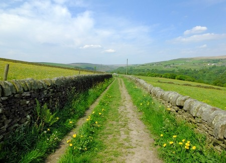 long straight country lane with dry stone walls surrounded by green pasture with wildflowers in beautiful early summer sunlight with blue sky and clouds with pennine hills visible in the distance
