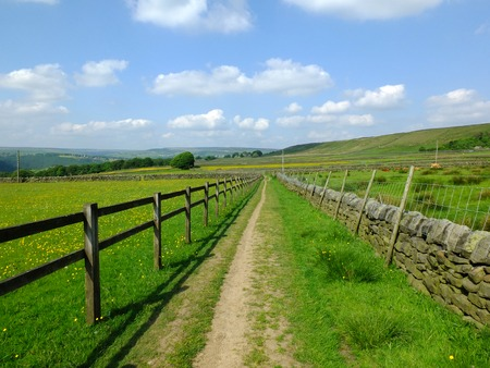 long straight footpath runiing alongside a fence a dry stone wall into the distance with bright spring flowers in fields with a blue sunlit sky and the pennine hills visible in the distance in yorkshire dales countryside