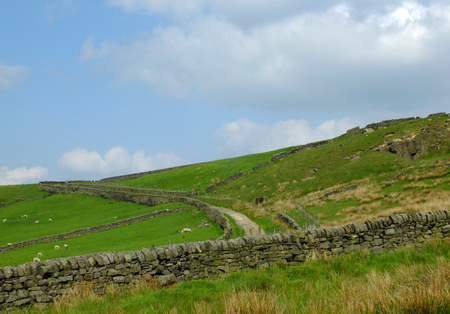 scenic view of a rough yorkshire moorland and pasture with sheep grazing in fields bordered by dry stone walls running up a steep hill with a small road running into the distance and exposed rocks Stock Photo