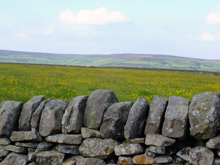 scenic view of a traditional dry stone wall in front of a spring meadow with yellow spring flowers with yorkshire pennine hills in the background with blue sky and clouds Stock Photo
