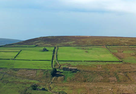 A panoramic sunlit pennine landscape with small valleys between rolling hills with typical yorkshire dales stone walls and farmhouses and sheep grazing in the fields below high moorland