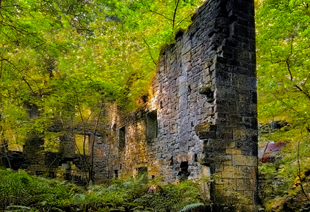 a ruined tall stone building surrounded by bright vibrant dense green woodland with trees growing though the floor and ferns on the ground with bright sunlight reflected on the walls Stock Photo